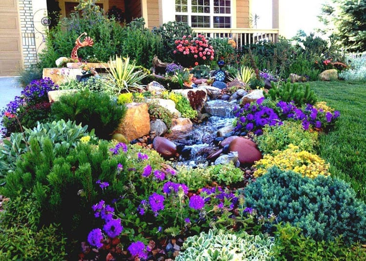 Cool Garden and Yard
