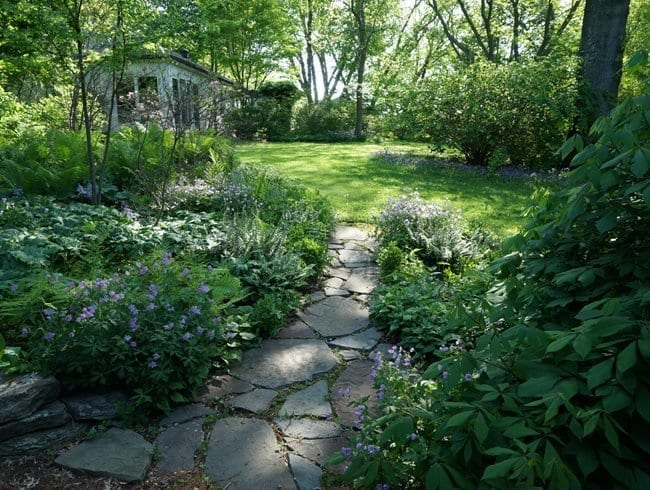 Eco-Friendly Garden and Yard